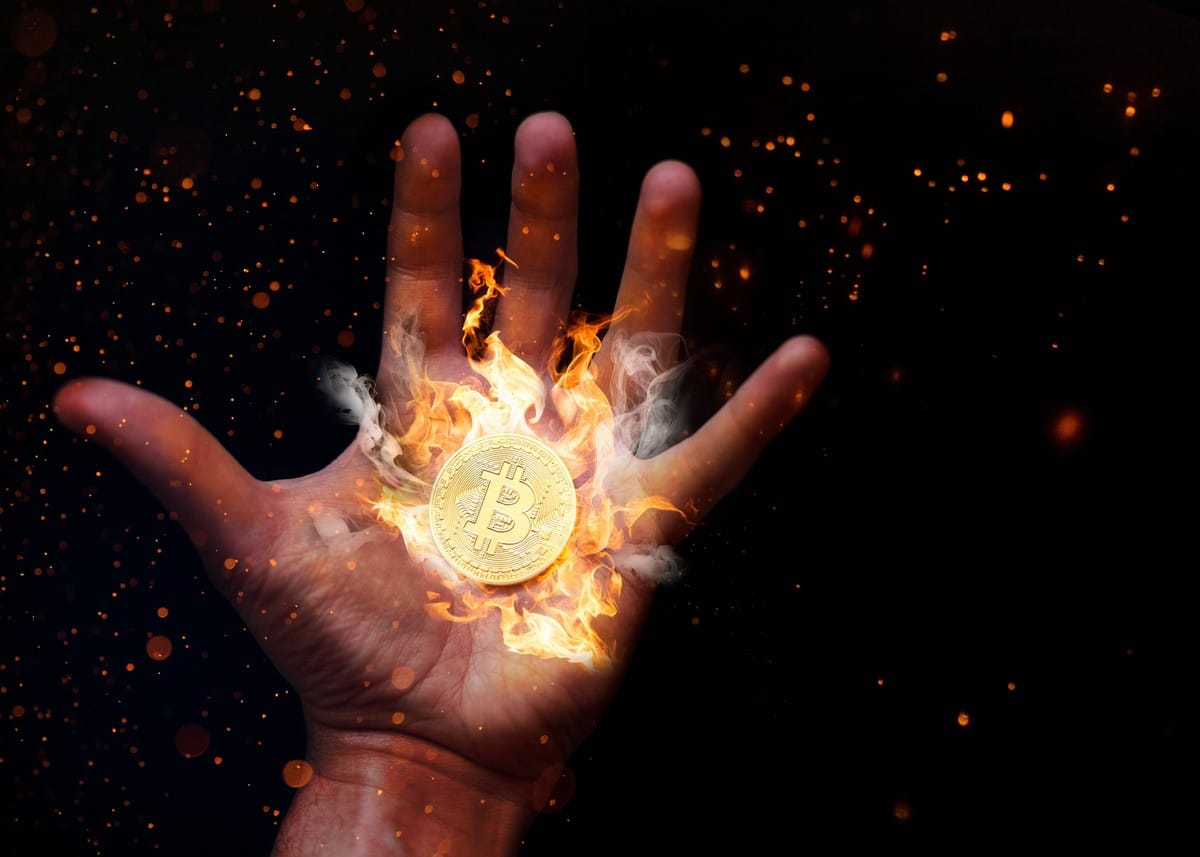 Kryptowährungen: Zwischen Zockerei und Zukunft