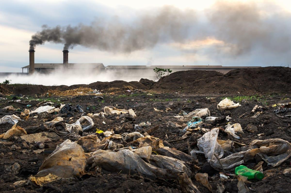 Nachhaltigkeit: 8 Strategien für den sauberen Vermögensaufbau