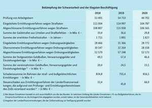 Statistik Finanzkontrolle Schwarzarbeit (FKS) 2021