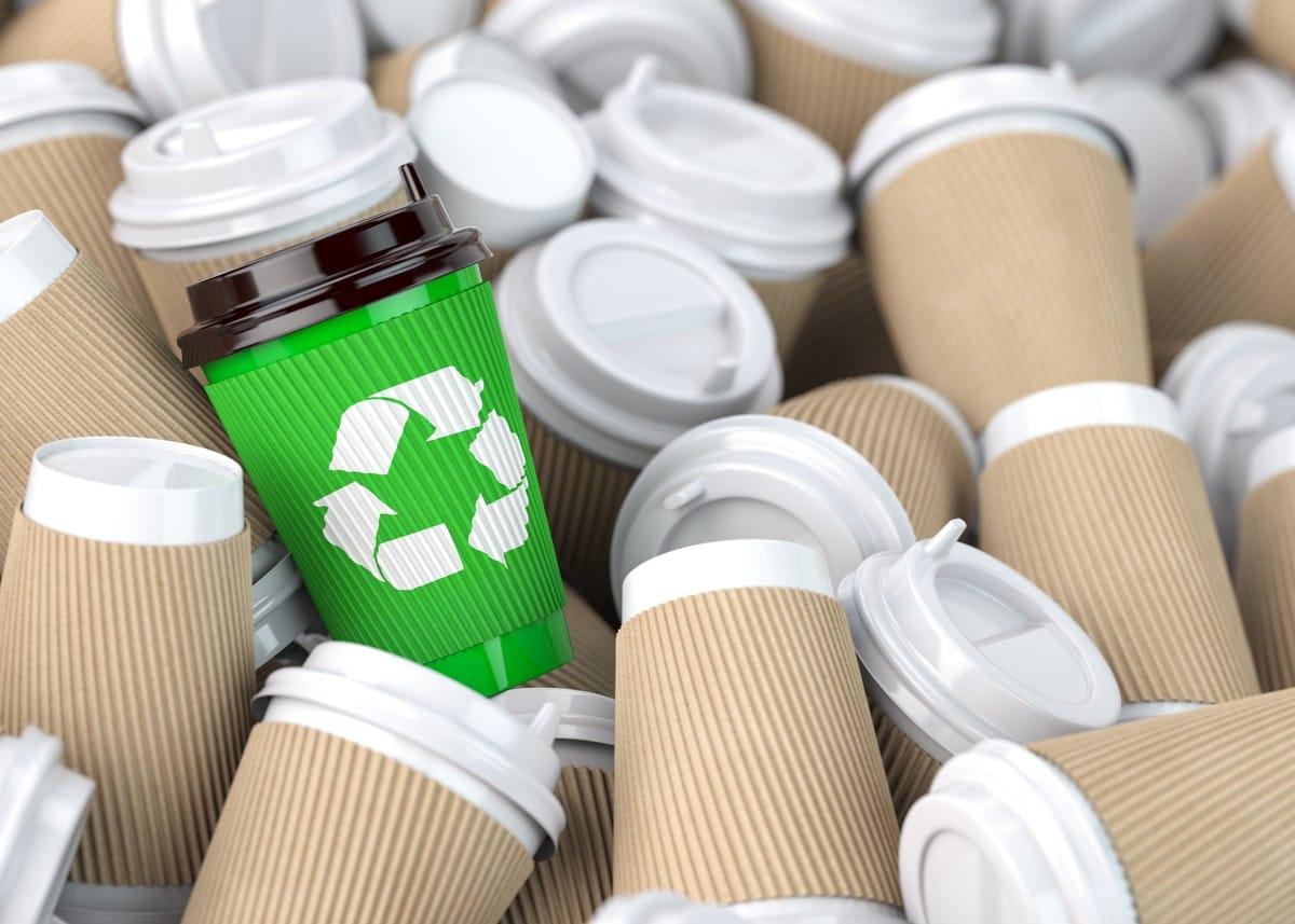 Nachhaltigkeit: 4 Optimierungsmöglichkeiten für Bäcker, Optiker und Tischler